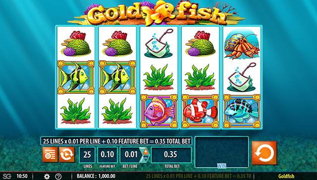 GoldFish Slot WMS